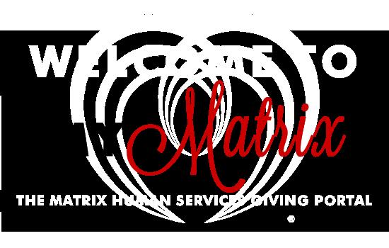 portal logo - 2015