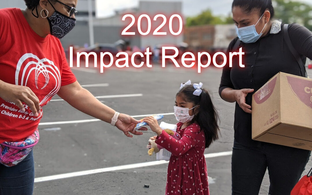 Matrix Human Services Impact Report 2020